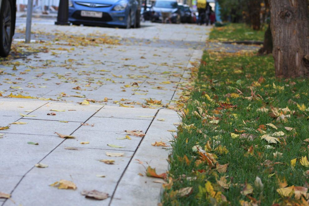 Новая тротуарная плитка и свежий газон