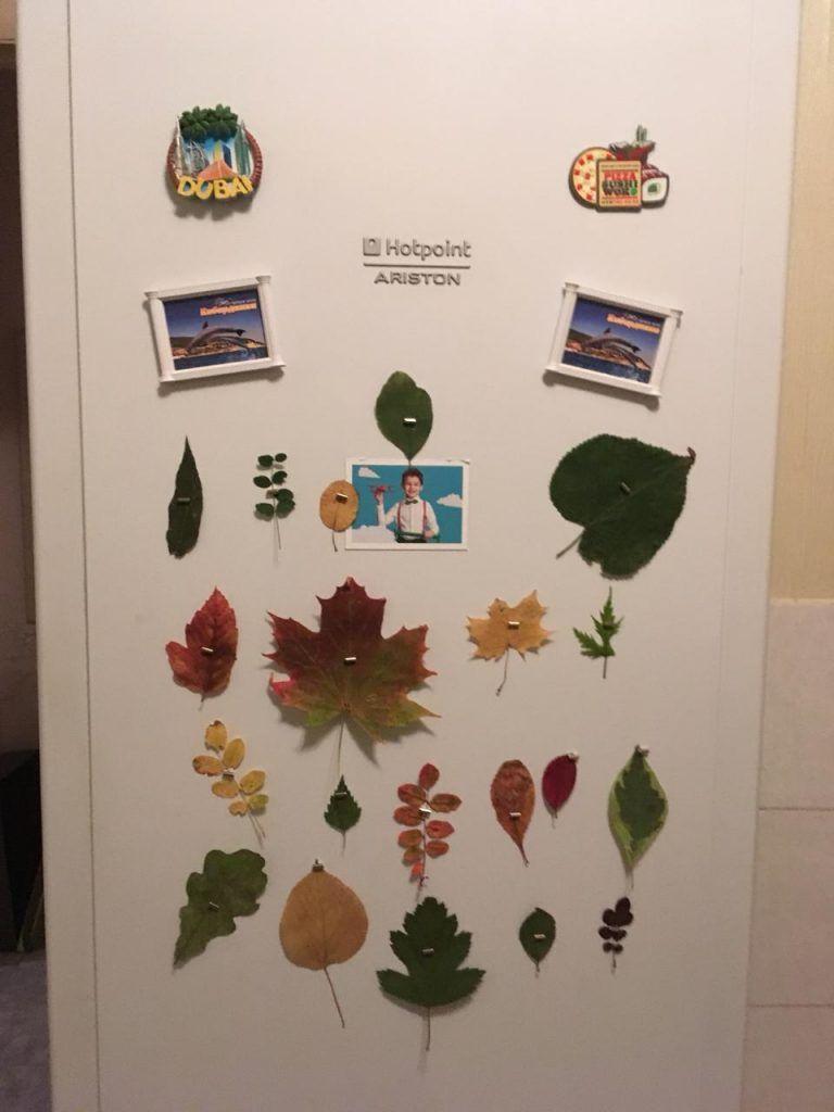 осень, холодильник, магнитик