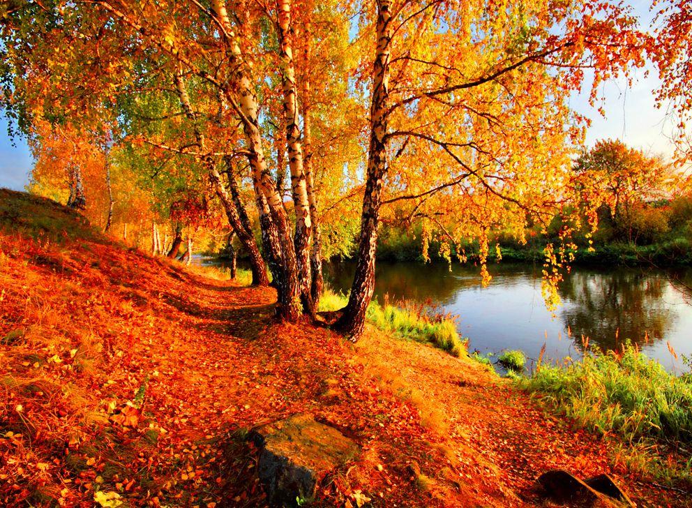 Покров, осень в Москве