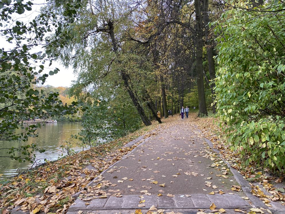 Царицыно, пруд, парки Москвы, мосприрода