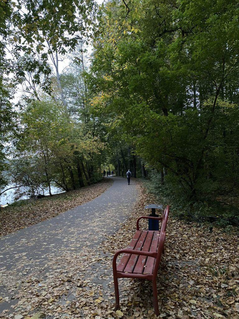 Прекрасное место для прогулок и пробежек, а также благоустроенные скамейки