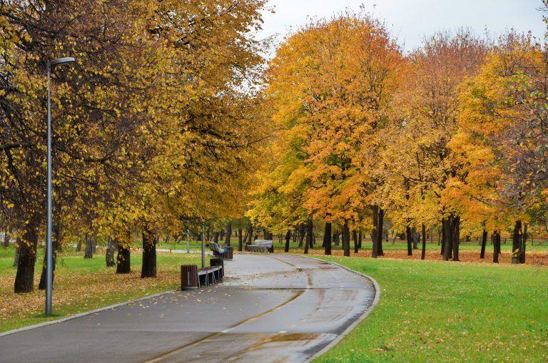 парки Москвы, осень в Москве