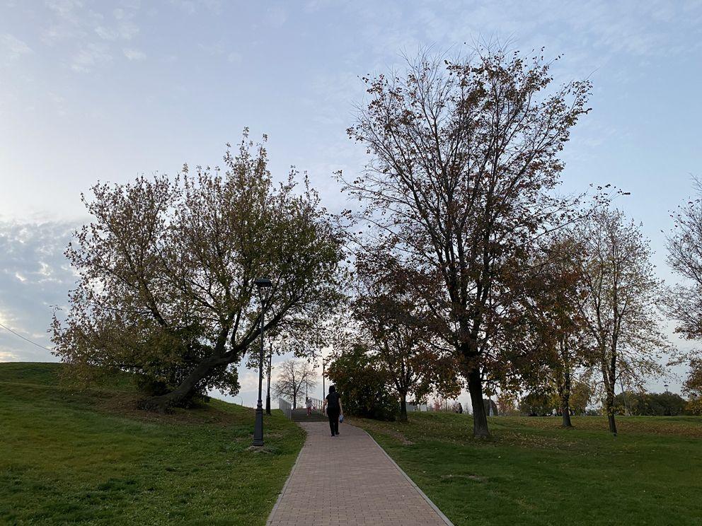 Общий вид на Коломенский парк