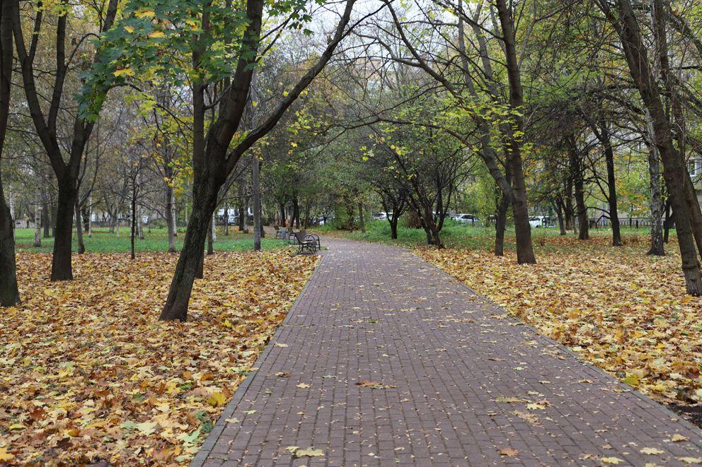 осень, дорожка, парк, листья