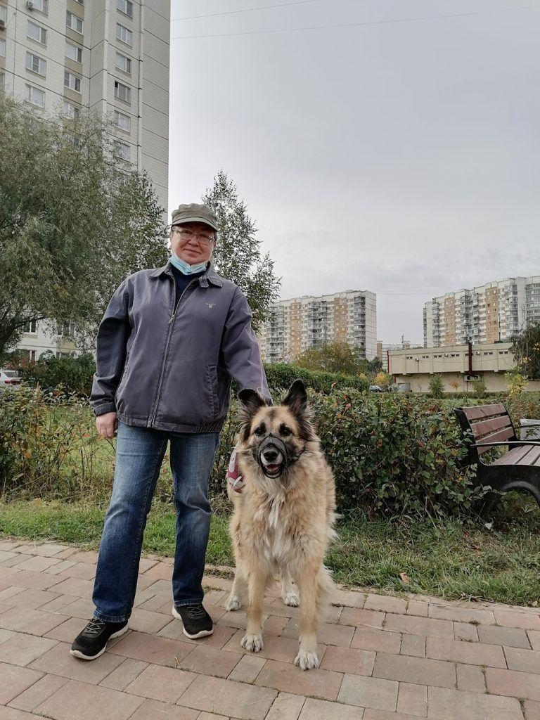 осень в Москве, Митино, оползень