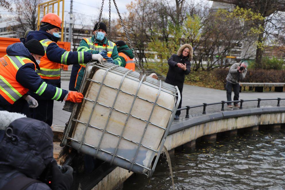 Выпуск рыбы в Останкинский пруд