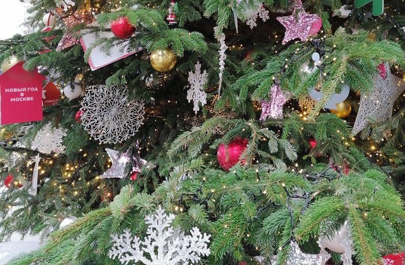елочный круговорот, елочный базар, елка, новый год
