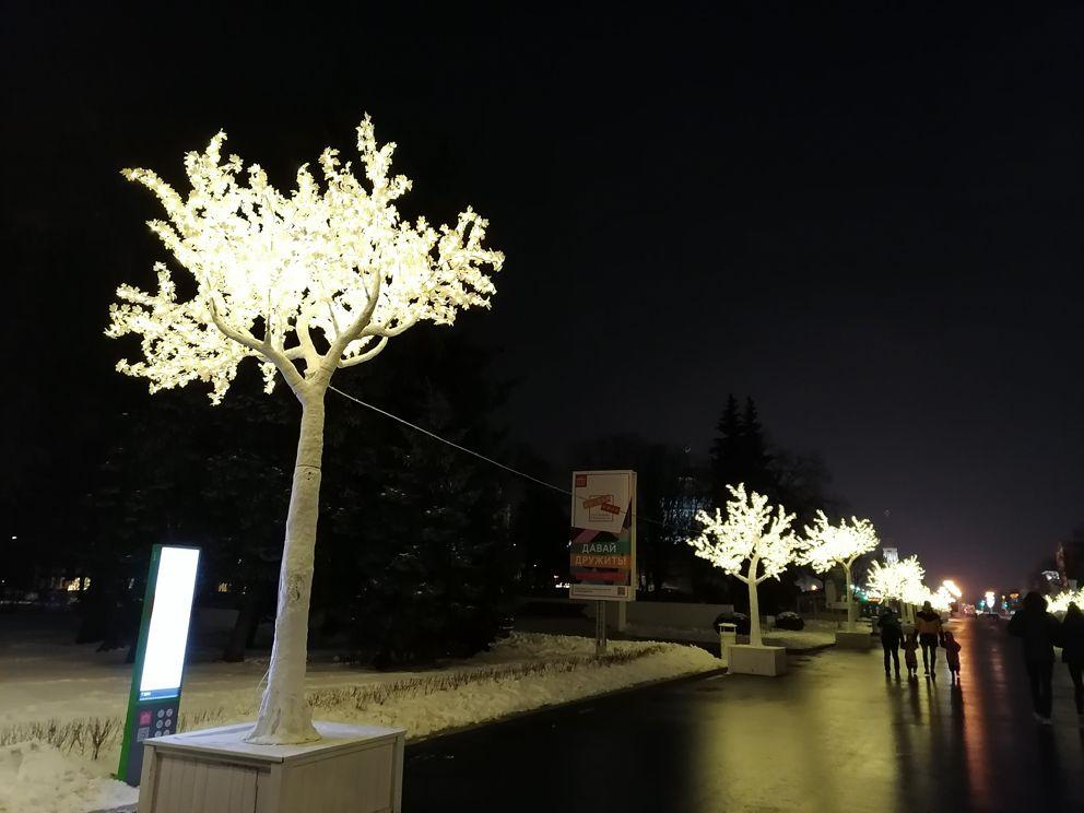 украшение Москвы, ВДНХ, Новый год