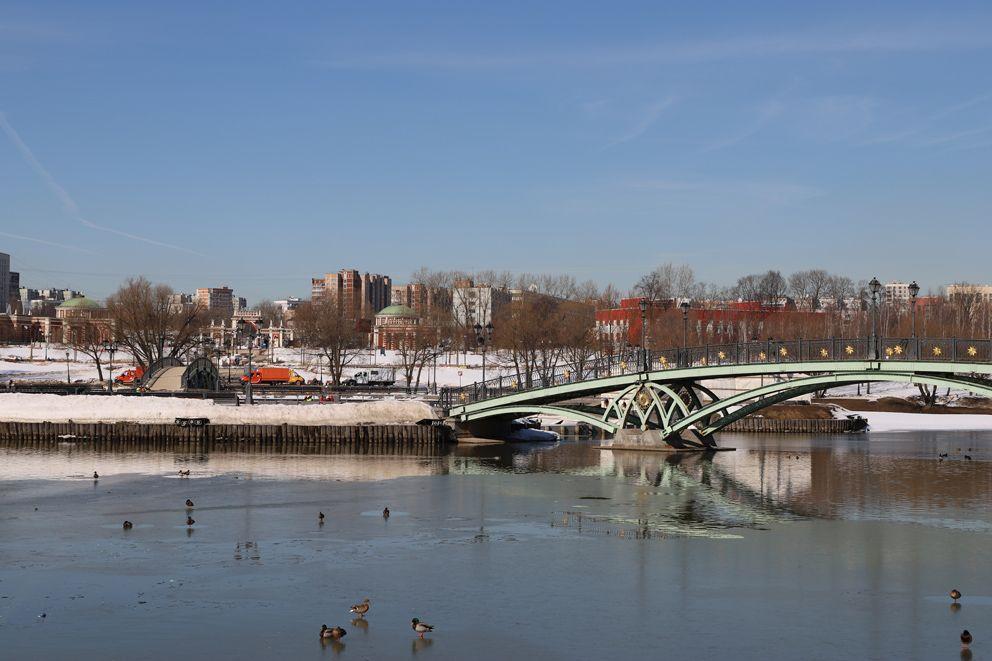 Царицыно, купол, фонтан, весна, пруд, утки, водоем