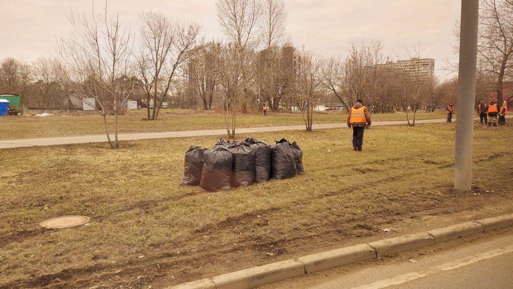 мушки с мусором, весенняя уборка, прогревание газона, субботник, сбор листвы