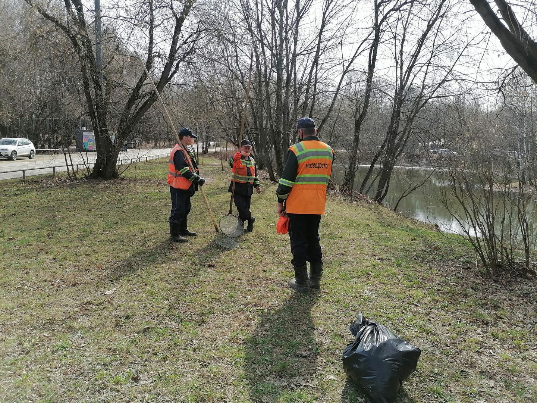 ГУП Мосводосток, водоем, очистка берега