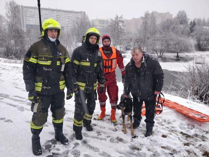 история спасения, собака, спасатели, лед, собака провалилась под лед