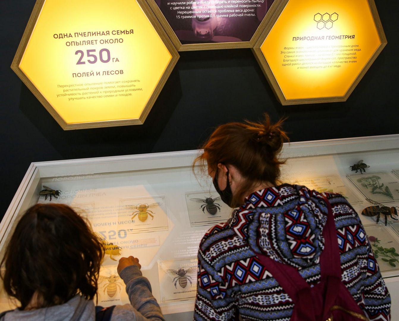 день пчел ЭПЦ Пчеловодство