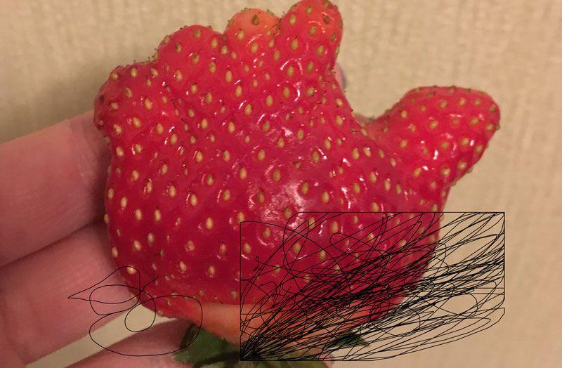 клубника, ягода