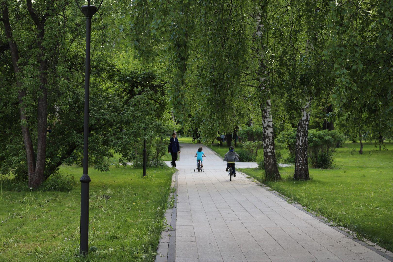 Благоустройство Москвы, Ботанический сад, парки Москвы, Ростокино, Сад Будущего, сквер