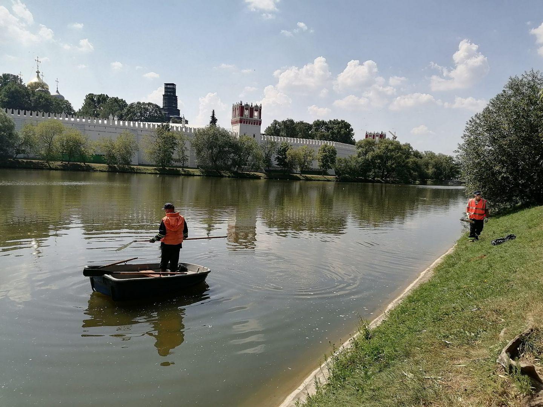 ГУП «Мосводосток»,Новодевичьи пруды , экология, уборка мусора