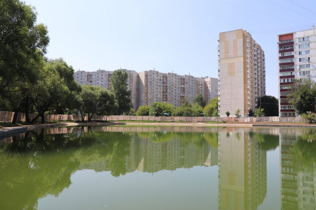 Гуп Мосводосток, Ясный пруд, экология Москвы, мусор