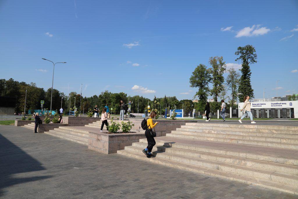 благоустройство, метро Динамо, озеленение