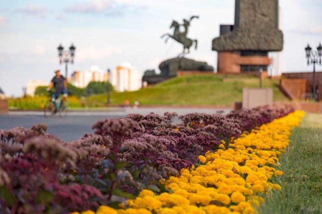 цветы, осень, украшение Москвы