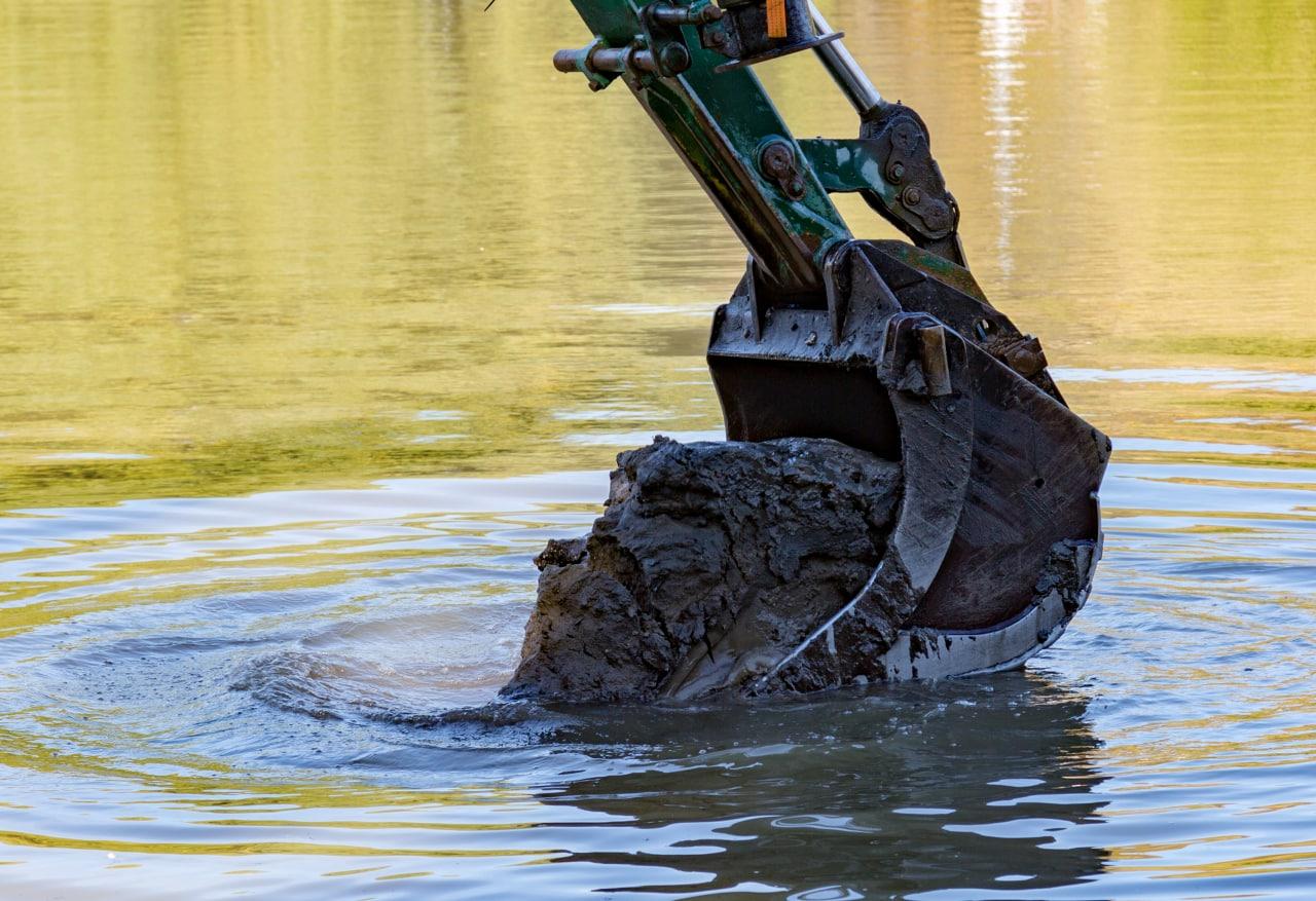 пруд «Садки», ил, очистка пруда