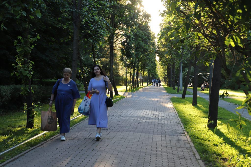 жара, лето, солнце, парк, отдых